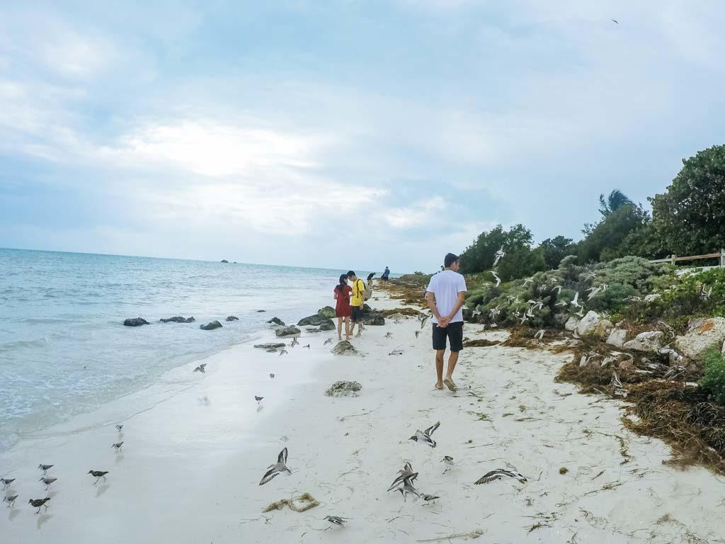 Caminhando em Key West Flórida MotorHome